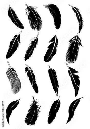 Valokuva Feather icons set