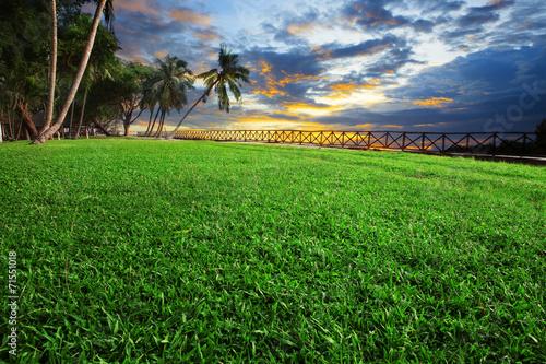 Deurstickers Groene beautiful landscape of green grass field park against dusky sky