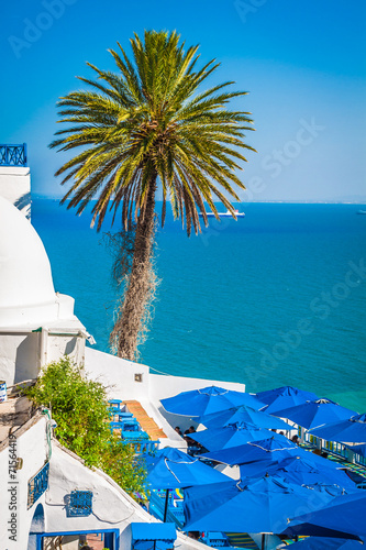 Tuinposter Tunesië Cafe with beautiful view on Sidi Bou Said harbour