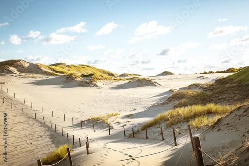 Canvas Prints White desert landscape