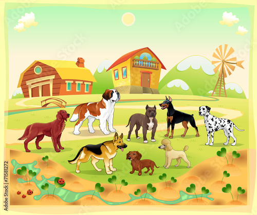 Wall Murals Ranch Landscape with group of dogs