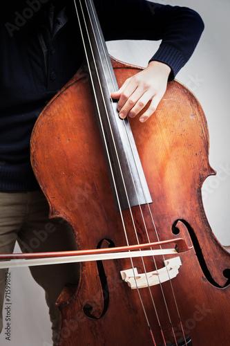 Fototapeta Basista