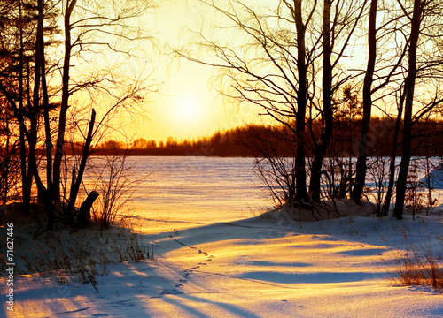 Tuinposter Zwavel geel Winter nature, sunset