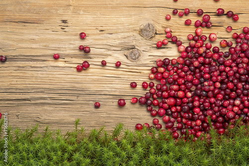 Fotografia  Cranberries on rustic board and moss.