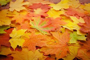 Naklejka na ściany i meble Autumn leaves on wooden table.