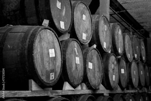 Obraz w ramie Wine barrels