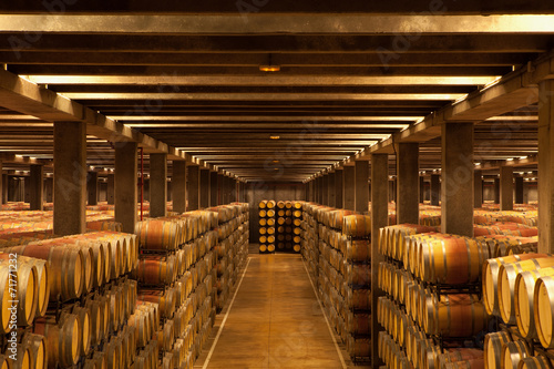 Photo La Rioja Wine Barrels