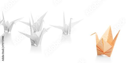 Photo  Individuality concept. Origami birds on light background