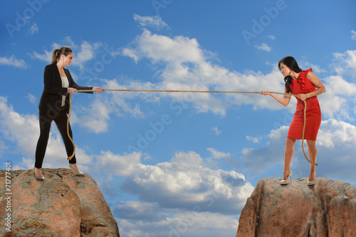 Fotografie, Obraz  Businesswomen in Tug of War