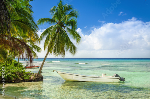 Beautiful beach with palm trees and moored fishing boat Poster