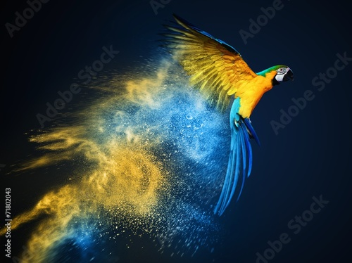 Vászonkép Flying Ara parrot over colourful powder explosion