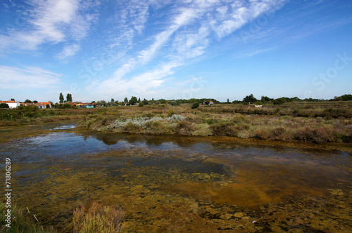 Le Port Des Salines Ile D Oleron Buy This Stock Photo And