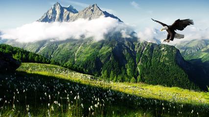 Panel Szklany Góry hunting eagle