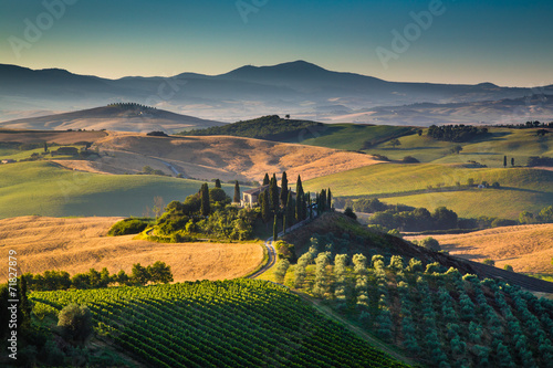 Fototapety, obrazy: Scenic Tuscany landscape at sunrise, Val d'Orcia, Italy