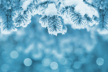 Background With Snow-covered F...