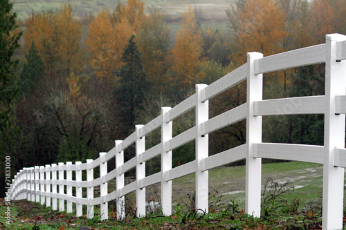 Láminas  White Fence During Autumn