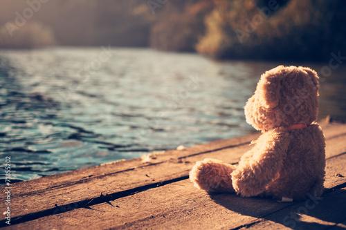 Fototapeta Teddy bear