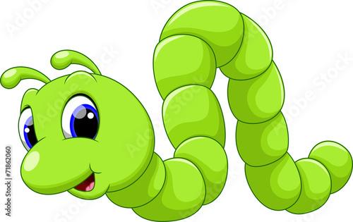 Fotografía  Cute caterpillar cartoon