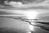 Plaża - monochromatyczna - 71881084