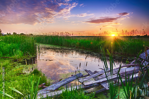 Fotobehang Purper Rural summer sunrise