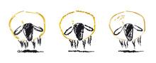 Drei Schafe Stehen Nebeneinand...