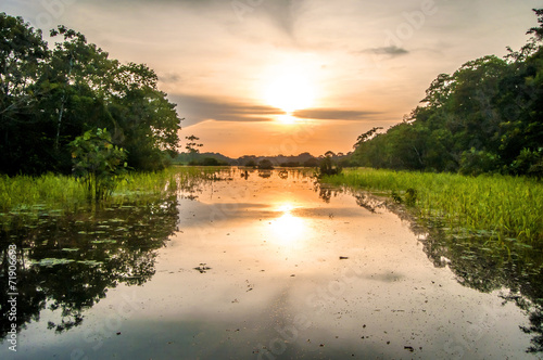 Fototapeta River in the Amazon Rainforest at dusk, Peru, South America