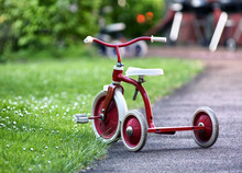 Red Child Tricycle In A Garden