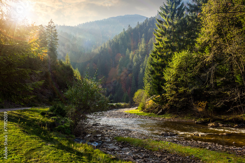 Printed kitchen splashbacks River forest river in mountains