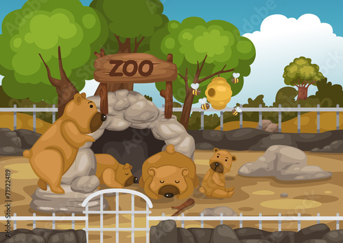 zoo and bear vector