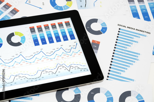 Pinturas sobre lienzo  Business charts and diagrams on digital tablet.