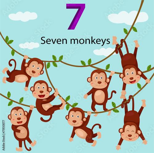 Fotografia  Illustrator of number seven monkeys