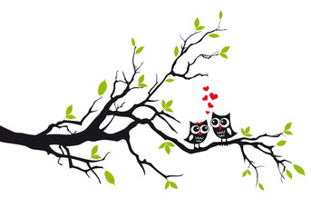Naklejka Cute owls in love on tree, vector