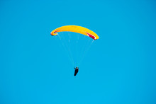 Adventures With Paragliding Aviator