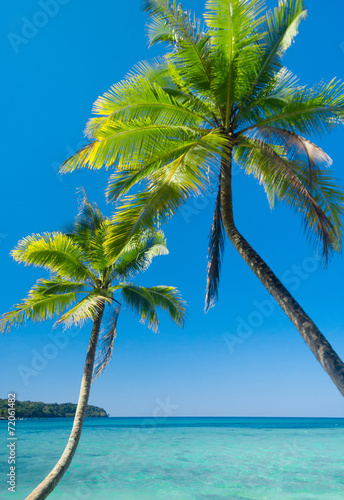 Fototapety, obrazy: Idyllic Island Beautiful Beach