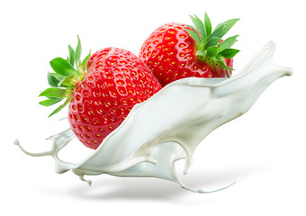 Panel SzklanyTwo strawberries falling into milk. Splash isolated on white bac