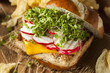 Homemade Vegetarian Soy Tofu Burger
