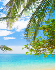 Panel Szklany Do pokoju Island Lagoon Jungle and Sea
