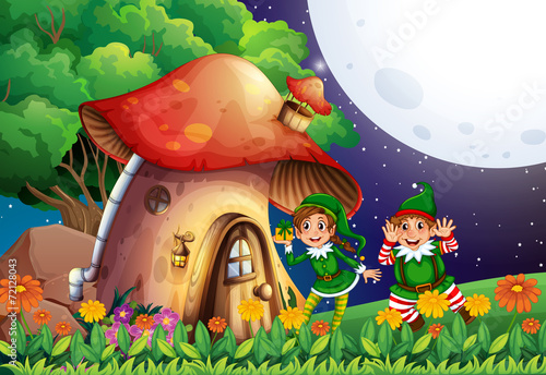 Poster Magic world Elf and house