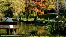Autumn Park (trees) - People Relax - Lake With Ducks