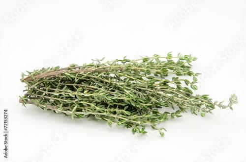 Fotografía  Hierbas aromaticas