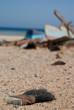 Ägypent Urlaub Strand