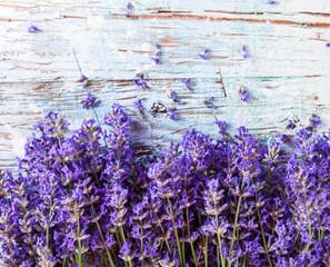 Fototapeta Lawenda Fresh lavender on wood