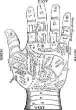 Vintage Graphic Palmistry Chiromancy