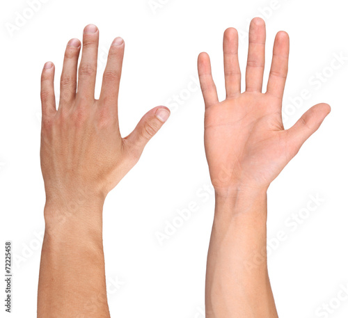 Men hand isolated on white Wall mural