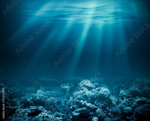 Valokuva Sea deep or ocean underwater with coral reef as a background for