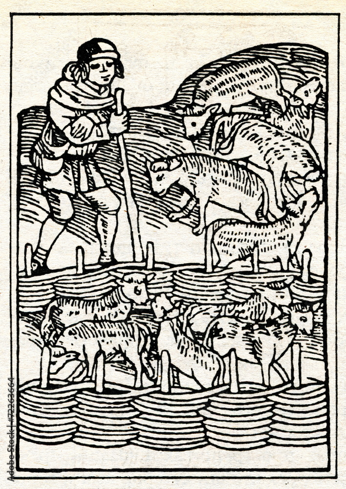 Photo & Art Print Medieval draving