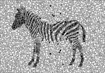 Fototapeta na wymiar Abstract Zebra