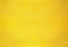 Natural Honey Comb Background Or Texture
