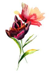Panel Szklany Tulipany Tulips and Poppy flowers