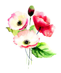 Panel Szklany Kwiaty Poppy flowers